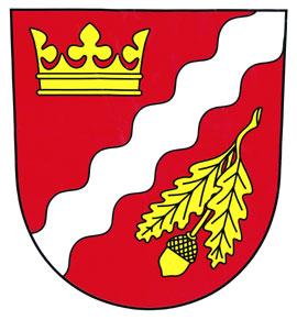 www.obecnizbor.cz